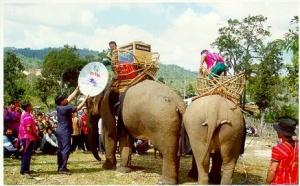 Elephant library