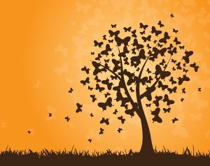 butterflies_tree