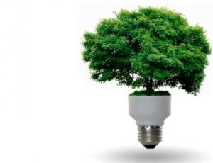 Fuente: http://www.energias-renovables.com/