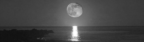 la-playa-y-la-luna